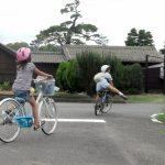 子ども用自転車 おしゃれと人気度でランキング 口コミと選び方も